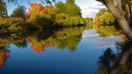 Beautiful peaceful river and autumn tree reflection
