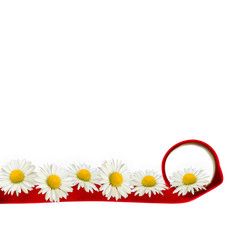 Daisies and red ribbon