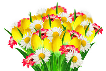 Bouquet of daisies, tulips and gerbers