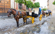 Two Horse carriage