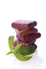 stevia rebaudiana as sweetener for chocolate cookies