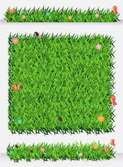 Vector Green Grass Backgrounds ecological concept