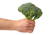 Hand With Broccoli on White