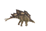 Stegosaurus dinosaur against white background