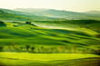 Leinwandbild Motiv Countryside, San Quirico´Orcia , Tuscany, Italy