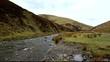 wanlockhead scotland
