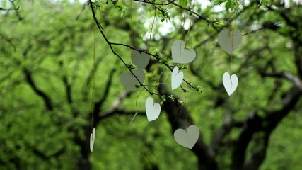 white cardboard heart on the tree