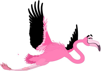 Flamingo - Comic