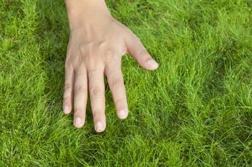 Hand on  grass
