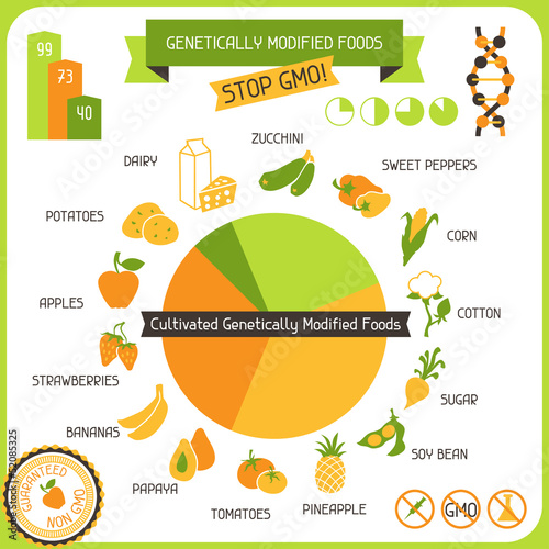 Information Poster Genetically Modified Foods