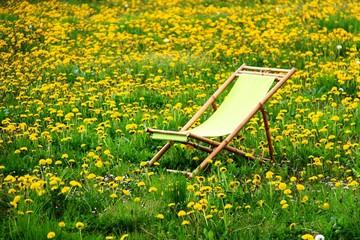 liegestuhl auf blumenwiese I