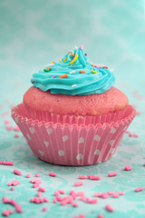 Pink and blue cupcake