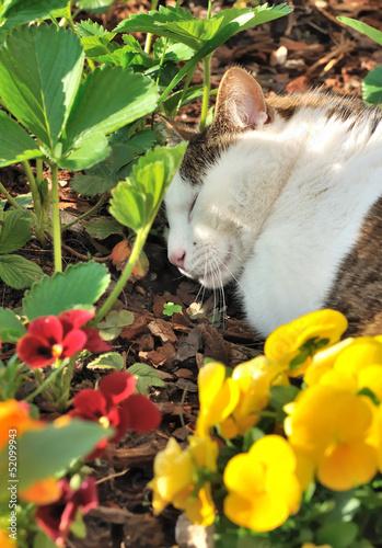 repos dans le jardin