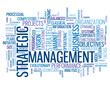 STRATEGIC MANAGEMENT Tag Cloud (strategy business lean process)