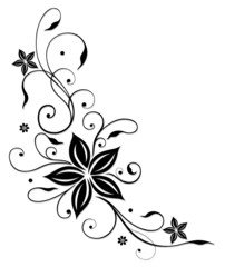 Blume, Blüte, Ranke, black flower
