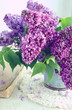 Beautiful lilac flowers in grey vase