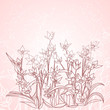 flowers outlines as spring background