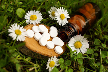 Schüssler Salze mit Blüten
