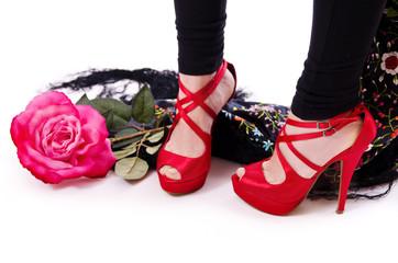 Zapatos, flor y mantón de manila