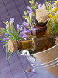 sage, rosemary and chamomile herbs