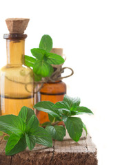 fresh mint oil in the bottles