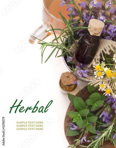 sage, rosemary and chamomile herbs with place for the text