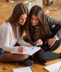 Two Happy Women Studying Together