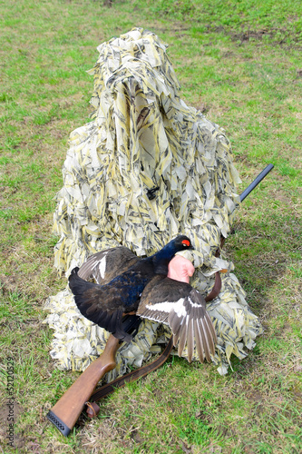 hunter in camouflage with a gun holds grouse