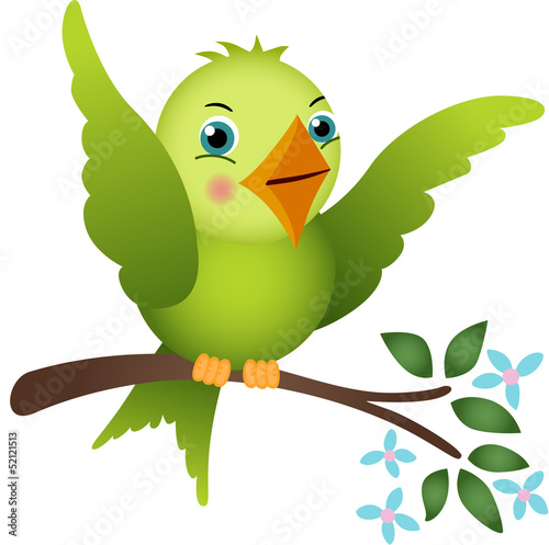 Green bird on tree branch