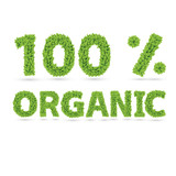 100% organic text of green vector leaves poster