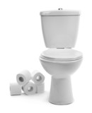 Fototapety White toilet bowl with toilet paper, isolated on white