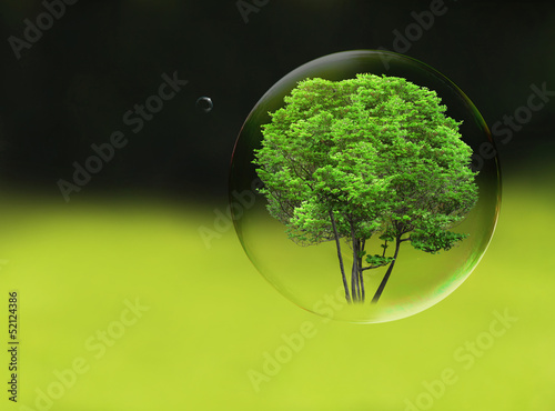 Tree in a bubble, room for text or copy space