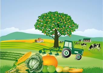 Landwirtschaft und ernten
