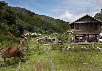 khamu town