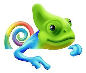 Rainbow chameleon pointing down