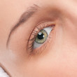Part of woman face: closeup eye