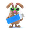 Chocolate bunny always backs up his data