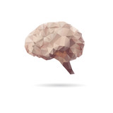 Brain abstract isolated on a white backgrounds