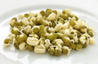 Sprouted mung beans on white plate close up
