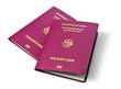 two new german biometric passports