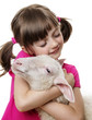 little girl with a lamb