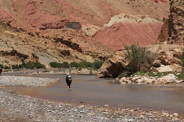Paysages de l'Atlas marocain