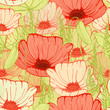 Seamless floral backgroung with hand drawn poppy flowers fiald