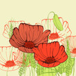 Retro hand drawn greeting card with poppy flowers
