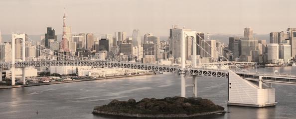 Tokyo Skyline - panorama in sepia
