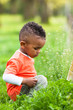 Outdoor portrait of a cute young  little black boy playing outsi