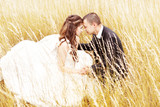 Wedding couple bride and groom  in yellow grass
