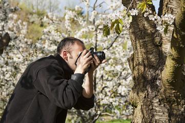 Fotografiando cerezos en flor