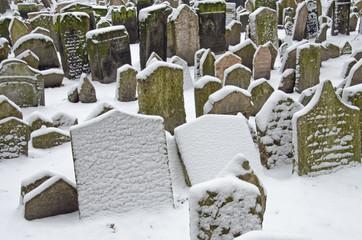 Jüdischer Friedhof  - Prag