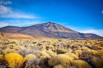 Volcanic lava landscape on Teide, Tenerife,  Spain.